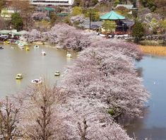 World's Most Beautiful City Parks: Ueno Park