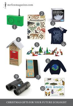 The best Christmas gifts for miniature ecologists