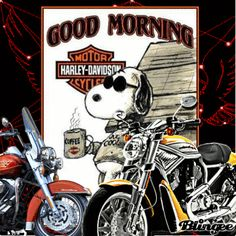Harley Davidson Decals, Harley Davidson Quotes, Harley Davidson Wallpaper, Good Morning Snoopy, Snoopy Und Woodstock, Superhero Coloring, Snoopy Pictures, Joe Cool, Harley Davison