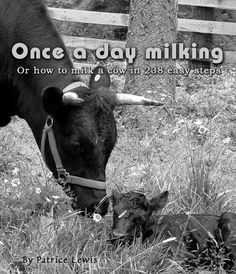 Once a day milking by Patrice Lewis- great article about beginning the process of milking a family cow