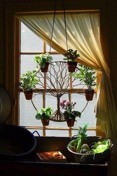 Tree window planter