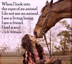 When I look into the eyes of an animal....