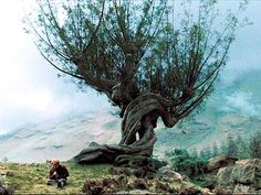 My druid tree is a Willow, so I am combining that with the whomping willow as a beginning to a back piece.