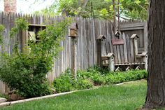landscaping for privacy | ideas for privacy fencing landscaping | Backyard Playscape Inspiration