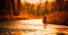 Taylor fishing the Payette River. Mccall Idaho, Fly Fishing, River, Play, Mountains, Nature, Painting, Art, Craft Art