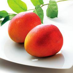 太陽輝く宮古島の土壌と潮風が作った贅沢なフルーツ。【宮古島 マンゴー】