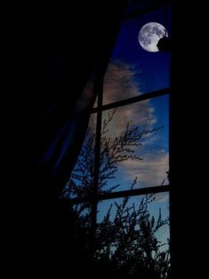 Lights and Shadows Moonlight Photography, Star Photography, Nature Photography, Night Window, Window View, Nocturne, Night Aesthetic, Wolf Pictures, Beautiful Moon