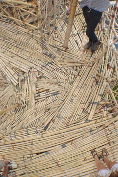 Follow the making of a bamboo sculpture by Mike and Doug Starn ( brothers and artists)