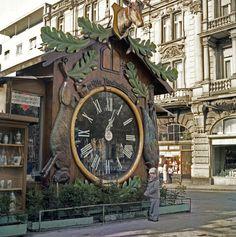 Cuckoo clock in Wiesbaden, Germany