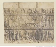 [Persépolis. Relief de l'Apadana. Oeuvre de Luigi Pesce] : t. 2 | Gallica