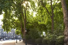 Bedford Square Garden, a perfect place to day drink across from the NYU building