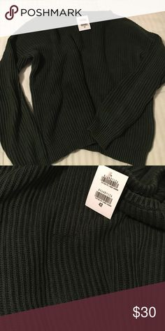 NWT flawed Brandy Melville Ollie Sweater Bought online and waited too long to return Brandy Melville Sweaters