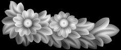 ASJm7.jpg 1.024×426 pixels