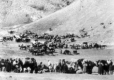 Σαρακατσάνοι: Ο δρόμος από τα χειμαδιά προς τα ορεινά καλοκαιρινά στανοτόπια. Φωτογραφία: Κώστας Μπαλάφας