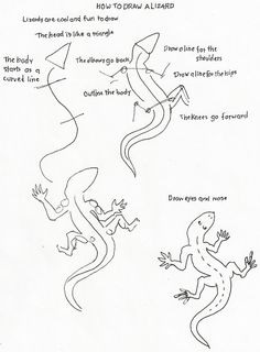 How to Draw Worksheets for Young Artist: Lizard