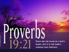 Prov 19:21