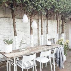 1,621 vind-ik-leuks, 64 reacties - suus (@thuisbijsuus) op Instagram: 'Tussen alle andere projecten door, alvast een klein beetje beginnen aan de tuin... Je wil ook niks…'