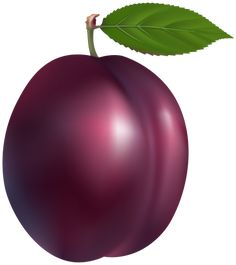 Plum PNG Clip Art in category Fruits PNG / Clipart - Transparent PNG pictures and vector rasterized Clip art images. Plum Fruit, Fruit And Veg, Marzipan Fruit, Vegetable Drawing, Fruit Clipart, Fruit Coloring Pages, Nutrition Poster, Funny Fruit, Garden Labels