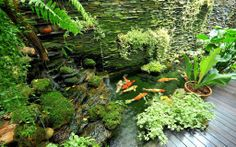 Small backyard design with fish pond