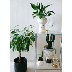 #インテリア#雑貨#interior#design#meyerlavigne #Flower#flowerpot #green #cactus#lamp #砂時計#uashmama #観葉植物#グリーン#サボテン#kurashiru#FlowerMeHappy#ゴールド#gold#color#北欧#サンドグラス#sandglass  久々投稿 サボテンが細く伸びてしまって調べたら日照不足らしい…