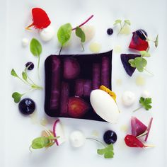 Terrine of baby beetroot with horseradish sorbet :: Le Manoir aux Quat' Saisons Tamarindo, Plate Presentation, Food Plating, Plating Ideas, Molecular Gastronomy, Culinary Arts, Creative Food, Food Design, Food Photo