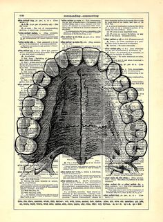 Dental Anatomy Teeth, Home, Kitchen, Nursery, Bath, Office Decor, Wedding  Gift, Eco Friendly Book Art, Vintage Dictionary Print 8 X 10 In