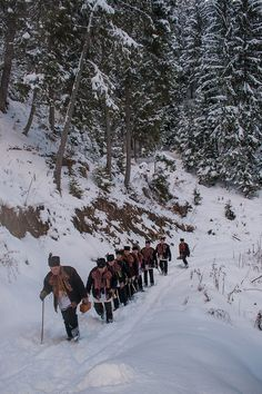 In the Carpathian Mountains, West Ukraine