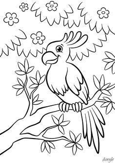 Dessin à imprimer, un perroquet sur une branche