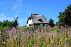 Heidehaus Insel Hiddensee