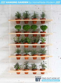 A DIY Hanging Herb Garden That Brings The Outdoors In  Being that I have no windows facing the sun, nor a backyard to garden, this may work well in our kitchen.