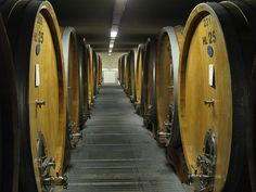 Botti, traditional Italian oak barrels.