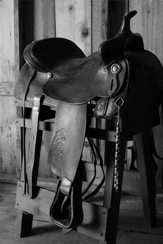 gotta love and simple western saddle. looks so comfortable