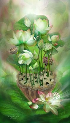 Healing Lotus - Heart Mixed Media - Healing Lotus - Heart Fine Art Print