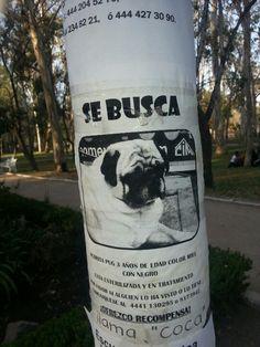 Este aviso estaba hoy en el parque de Morales cuando paseaba con mi perro...