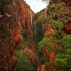 Spectacular Angels Landing in Southern Utah, USA Utah Usa, Four Corners, Photo Tree, Outdoor Travel, New Mexico, Grand Canyon, Arizona, Colorado, Southern