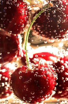 fizzy cherries
