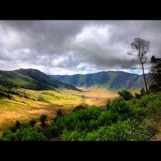 A vast landscape of savana in semeru