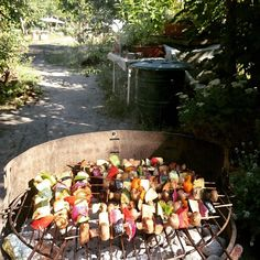 Vegetarian skewers for lunch in the garden at #ozoncyclery