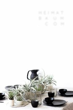 Urban Jungle Bloggers: Planty Table Setting by @heimatbaumcom