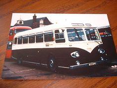 7 best peter images buses busses london bus