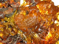 photos of amber carving - - Yahoo Image Search Results 14k Gold Jewelry, Amber Jewelry, Lapis Lazuli, Amber Room, Amber Fossils, Fossil Jewelry, Honey Brown, Minerals And Gemstones, Turquoise