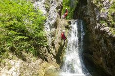 Canyoning in Oberösterreich bei Windischgarsten - buchbar bei Freelife Outdoorsport Waterfall, Sunshine, Outdoor, Abseiling, Tours, Landscape, Nature, Outdoors, Waterfalls
