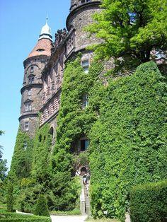 The western facade - the green wall - Mur végétalisé — Wikipédia