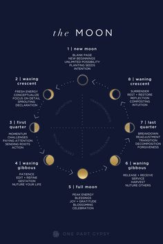 A guide to the lunar cycle- what each of the moon phases are called, what they indicate, and how to be most aligned with them. A guide to the lunar cycle- what each of the moon phases are called, what they indicate, and how to be most aligned with them. Magick, Witchcraft, Moon Magic, Lunar Magic, Astrology Zodiac, Moon Astrology, Zodiac Taurus, Book Of Shadows, Moon Child