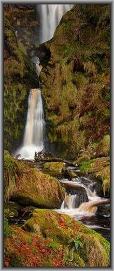 Pistyll Rhaeadr --  WALES  --  Berwyn Mountains #waterfall nature landscape amazing UK   #by Nigel Jones LRPS on flickr.com