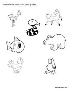 Encercle les animaux à deux pattes - Activité à imprimer.
