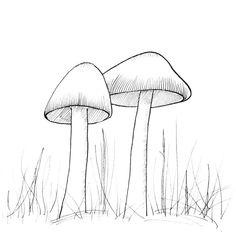 Wild - Day 16 #Inktober . . . #inktoberday16 #wild #inktoberwild #nature #art #artwork #artistsoninstagram #inktober2019 #illustration… Inktober, Illustration, Artist, Artwork, Nature, Instagram, Work Of Art, Naturaleza, Auguste Rodin Artwork