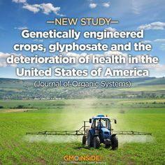 Evidence is mounting that glyphosate interferes with many metabolic processes in plants and animals and glyphosate residues have been detected in both. Glyphosate disrupts the endocrine system and the balance of gut bacteria, it damages DNA and is a driver of mutations that lead to cancer. More here: http://gmoinside.org/genetically-engineered-crops-glyphosate-deterioration-health-united-states-america-journal-organic-systems/ #food #glyphosate #stopmonsanto #humanhealth