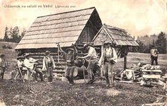 Liptovský salaš, 1912 Postcard, Czechoslovakia