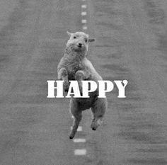 #happy